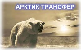 логотип Мурманской компании ArcT51 ArcticTransfer