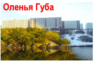 Такси Мурманск-Оленья Губа