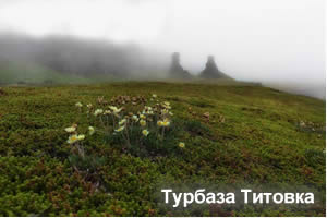 Такси Мурманск - турбаза Титовка